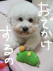 2006_1015a0001.JPG
