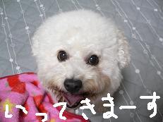 2006_1015a0002.JPG