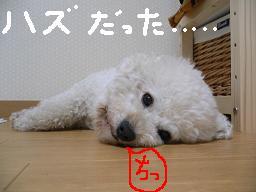 画像 655.jpg
