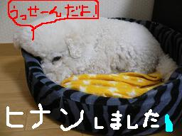 画像 659.jpg