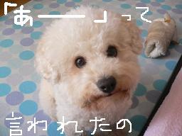 コピー (2) 〜 画像 733.jpg