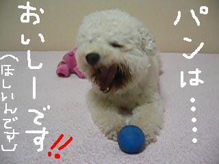 コピー 〜 コピー 〜 コピー 〜 画像 719.jpg