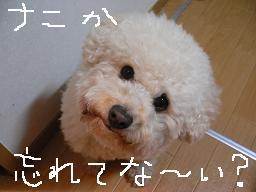 コピー 〜 画像 134.jpg