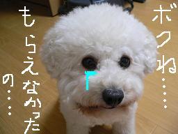 コピー 〜 画像 642.jpg