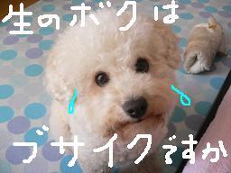コピー 〜 画像 733.jpg