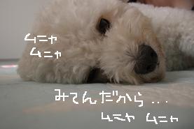画像 4099.jpg