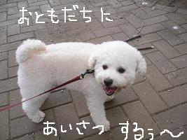 画像 4336.jpg