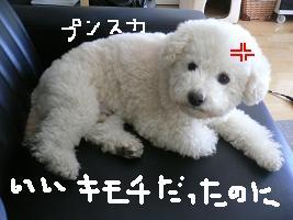 画像 4870.jpg