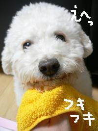 画像 5148.jpg