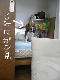 画像 5191.jpg