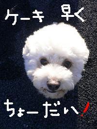 画像 5319.jpg