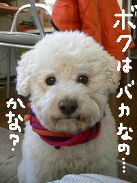 画像 5366.jpg