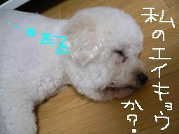 画像 582.jpg
