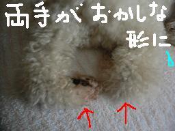 画像 677.jpg