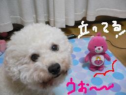 画像 704.jpg
