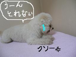 画像 723.jpg