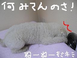 画像 724.jpg