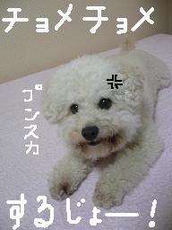 画像 726.jpg