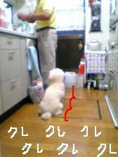 画像 821.jpg
