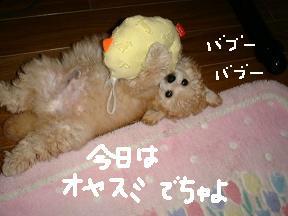 画像 9337.jpg
