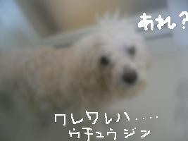 画像 9407.jpg