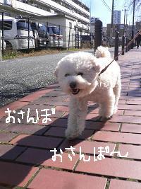 画像 9763.jpg