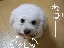 画像 2133.jpg