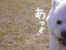 画像 2136.jpg
