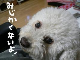 画像 6101.jpg