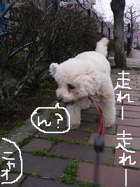 画像 6410.jpg