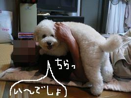 画像 8501.jpg